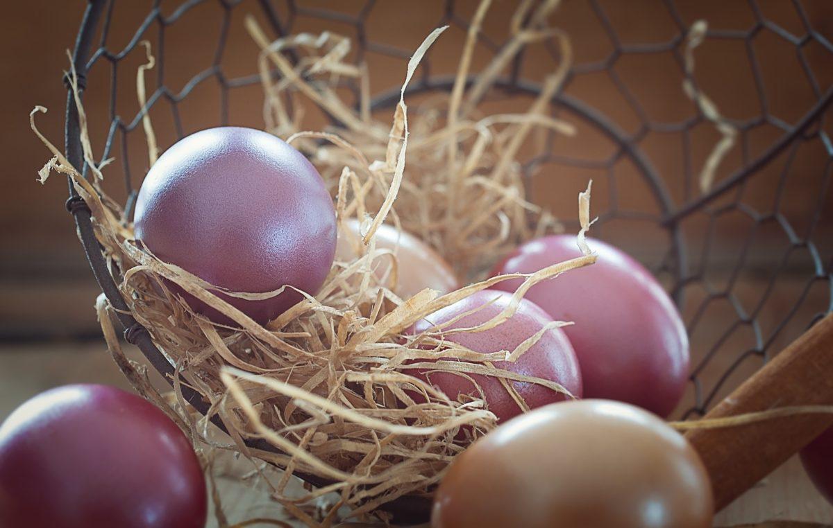Życzenia Wielkanocne od Małopolskiego TKKF-u